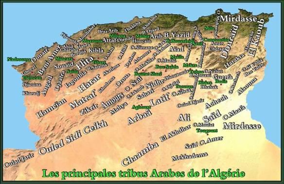 Les principales tribus Arabes de l'Algérie La plupart des tribus figurant sur cette carte se composent d'un grand nombre de branches. Les Bani Amer par exemple compté plus de 85 branches.
