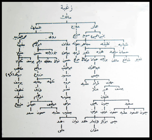 مخطوطة تاريخية لشجرة نسب أهم قبائل بنو مالك في عهد ابن خلدون ( المخطوطة لا تذكر كل فروعهم أو أسماء قبائلهم الحالية )