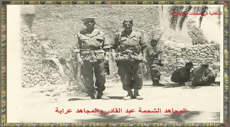 الشعانبة بنو سليم بنو هلال الجزائر