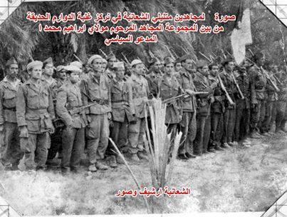الشعانبة بنو سليم ، بنو هلال الجزائر