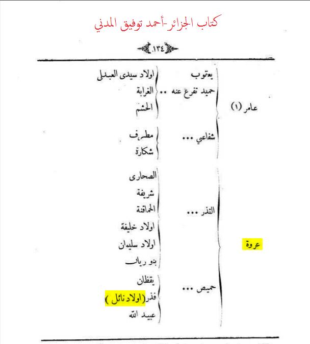 bani-nayel-00 (1)