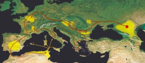 Alani-map