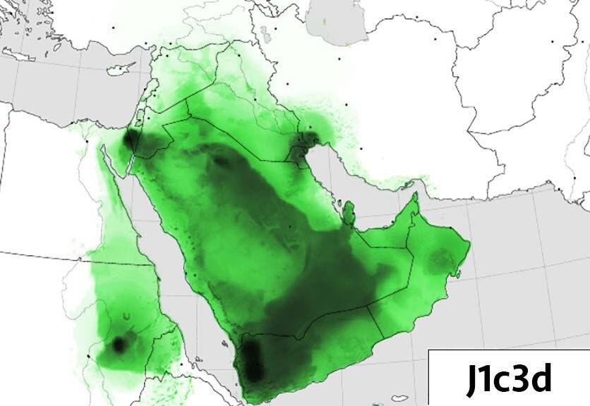 رد: القبائل عن طريق dna موقع السلالات العربية ...!