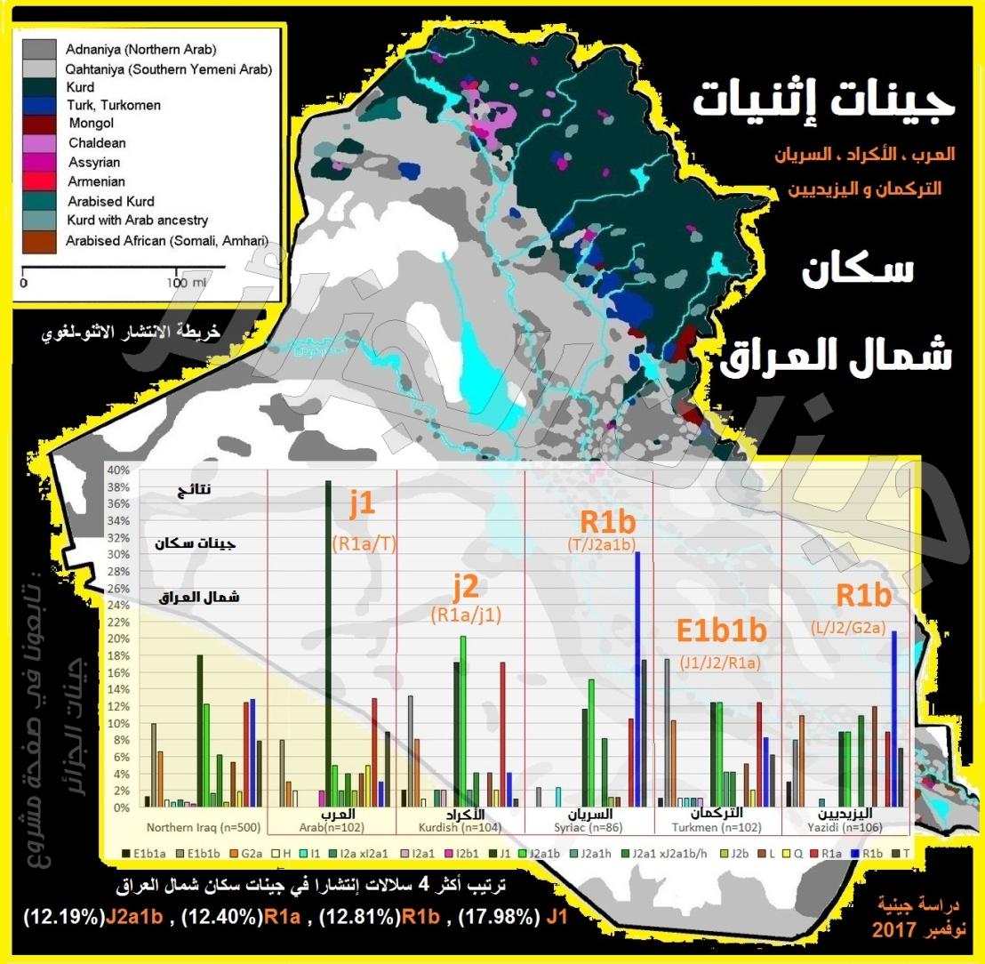 جينات سكان شمال العراق : جينات (( العرب + الأكراد + التركمان + السريان + اليزيديين)) —  DNA lineages of the Northern Iraqi Arabs, Kurds, Syriacs, Turkmens and Yazidis // ترجمة : جيناتالجزائر
