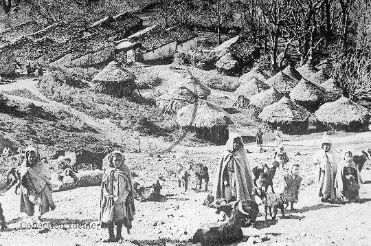الزواوة (القبايل) = بدو الجبال— les kabyles : Les Bédouins desMontagnes