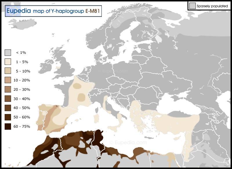 خداع الإحصائيات الجينية في شمال افريقيا … . جينات الأمازيغ والعرب في المغربمثالا
