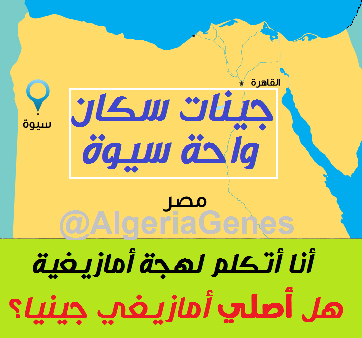 دراسة : جينات سكان واحة سيوة (مصر).. جينيا ليسوا أمازيغ – Siwa egyptian oasis DNA, they speak  Berber but by Genes: they are notBerbers