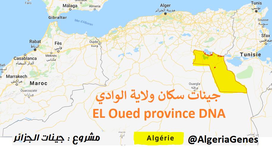 جينات سكان ولاية الوادي – El Oud provinceDNA