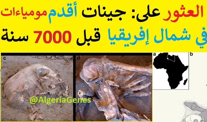 دراسة جينات: (أقدم النساء) اللاتي عشن في شمال افريقيا قبل 7000 سنة — mt-ADN des Femmes anciennes du nordD'afrique